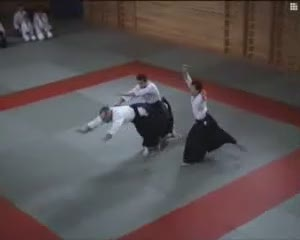 Aikido presentation by ballet artists