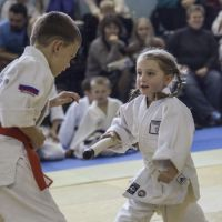 Tomiki Aikido Championship 2014 09